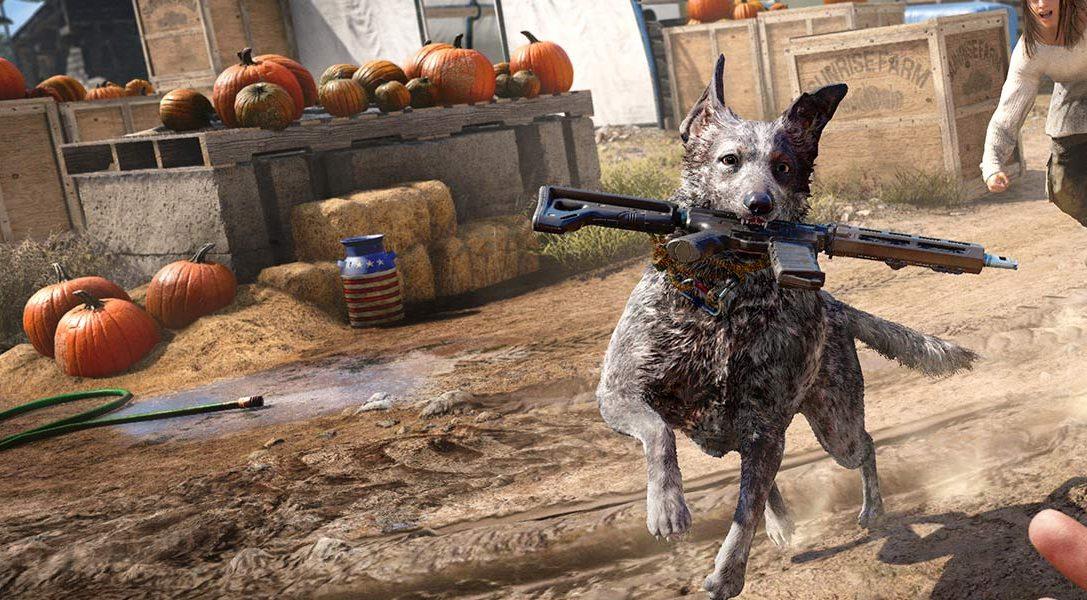 8 интересных фактов о псе Бумере и других четвероногих обитателях Far Cry 5
