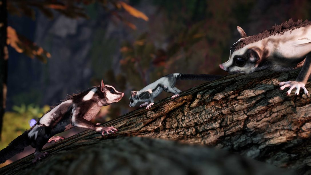 Away: The Survival Series выйдет на PlayStation 5 в конце лета